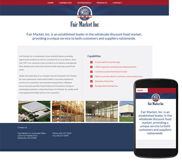 custom-responsive-website-fmi