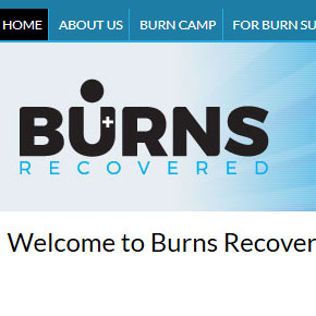 wordpress-website-burns