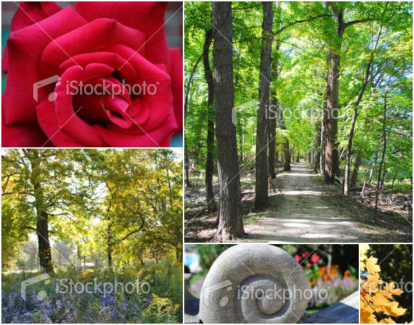 Chicago web designer stock photography